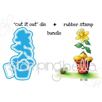 "BUDDING CHICK ""CUT it OUT"" wafer thin dies + RUBBER STAMP BUNDLE"