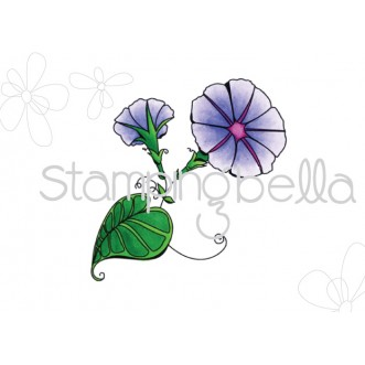 morning GLORIES for LULU DIGITAL DOWNLOAD