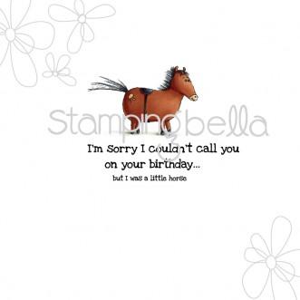 little horse (includes sentiment)