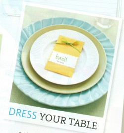 is that GORGEOUS or what?  HOW DO YOU DRESS YOUR TABLE?  if I could get away with paper plates, I would..LOL