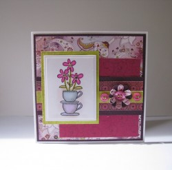 Tracy Cornhill used TEACUP DAISIES