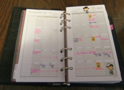 month view.. with japanese stickers to decorate and colored ink to stand out :)