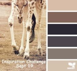inspiration 10-Sept-19