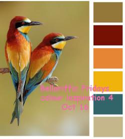 colour-inspiration-4---oct16 copy