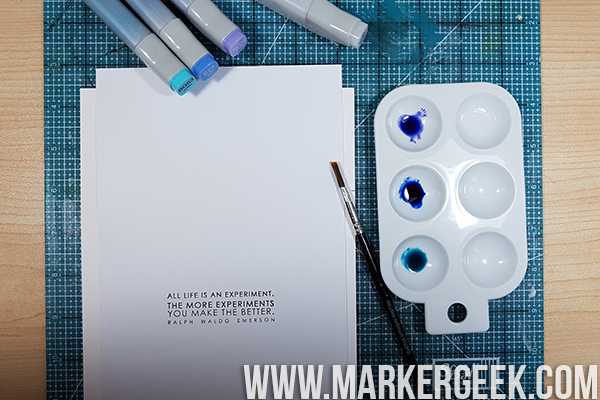 Stamping Bella Marker Geek Monday - Painting with Copic Various Ink Refills.
