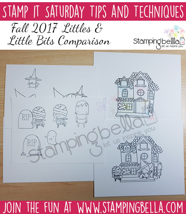 Stamp It Saturday: Littles & Little Bits Comparison (with colouring video)