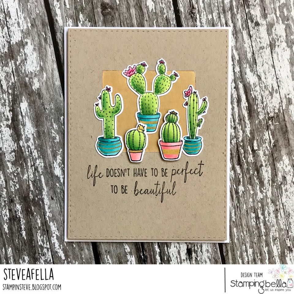 all stamps and CUT IT OUT dies are available at www.stampingbella.com- Stamp used CACTI, card by STEPHEN KROPF