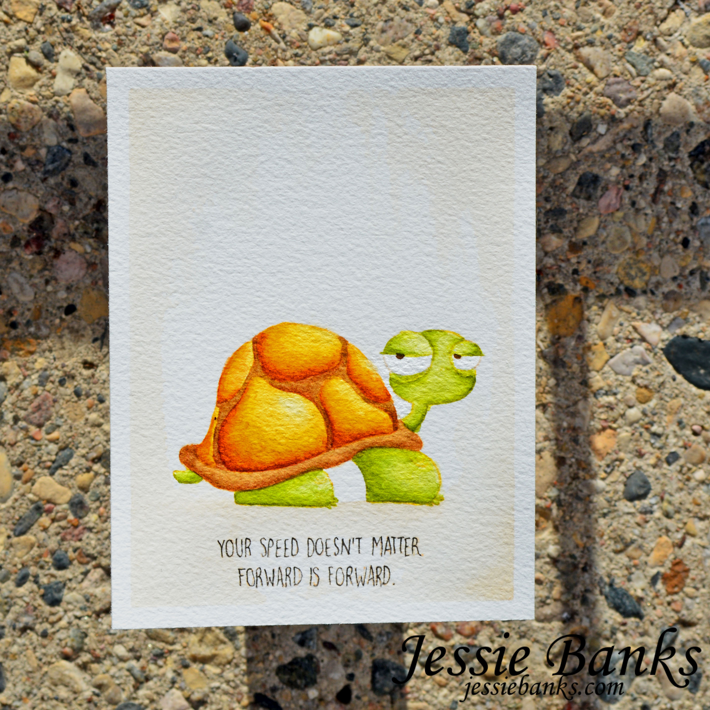 www.stampingbella.com: rubber stamp used: ODDBALL TURTLE.  Card by JESSIE BANKS