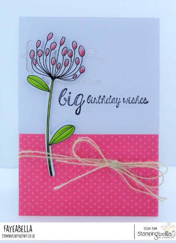 www.stampingbella.com: rubber stamp used DAISY FLORAL SET. card by  Faye Wynn Jones