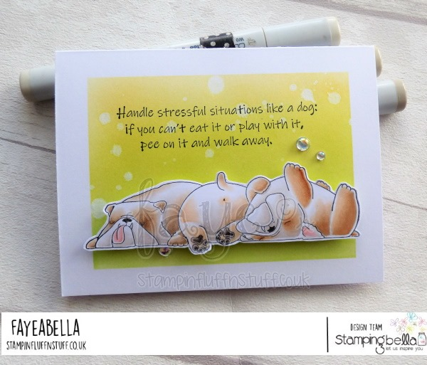 www.stampingbella.com: rubber stamp used:  BULLY TRIO and DOG SENTIMENT SET. card by FAYE WYNN JONES