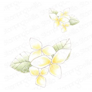 DANIELLE DONALDSON TUMBLEBLOSSOMS COLLECTION BLOSSOM #2 RUBBER STAMP