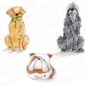 GOLDEN, WOLFHOUND and BULLDOG rubber stamps