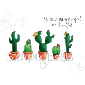 CACTI Rubber Stamps Set Of 6